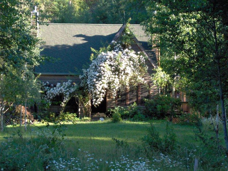 Rent a Private Park and Wildlife Preserve - Image 1 - Willits - rentals