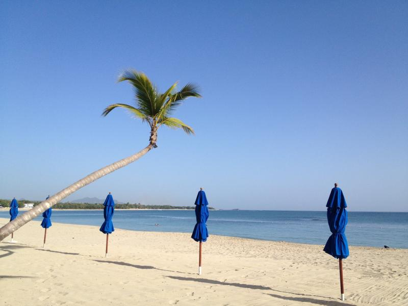 Awesome Beach and Golf Condo for Rent - Image 1 - Puerto Plata - rentals