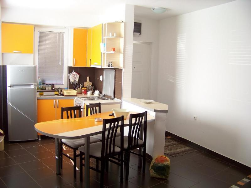 Apartment for rent in Ohrid, R.Macedonia - Image 1 - Ohrid - rentals