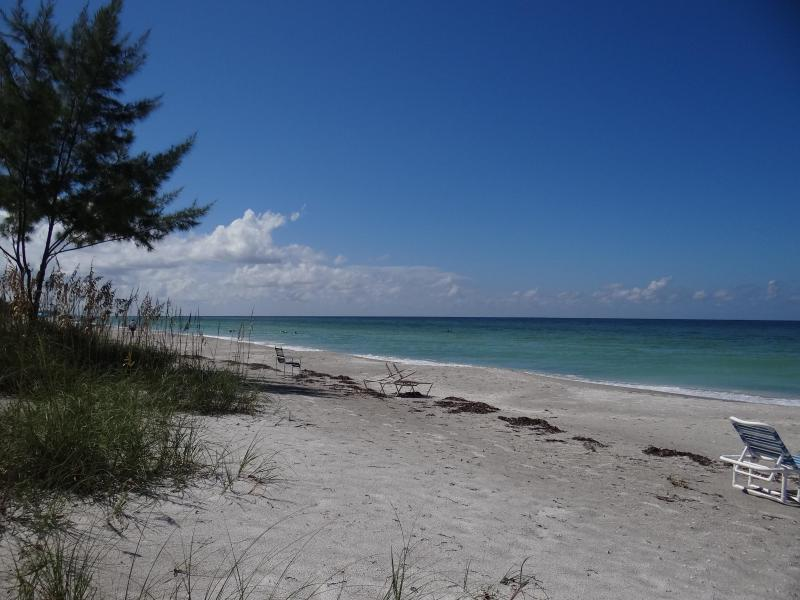 Gulf Front First Level Walk Out to the Beach Longboat Key, Florida - Image 1 - Longboat Key - rentals