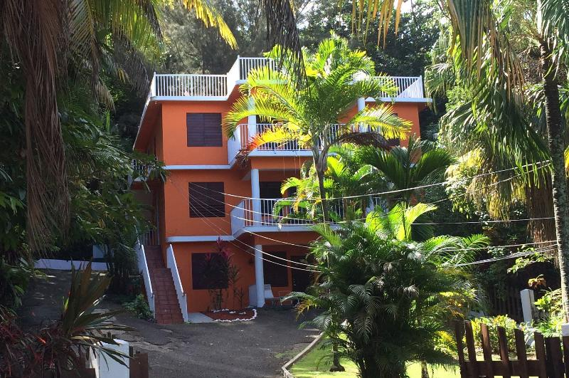 New Look for Casa Bianca bright Orange - Casa Bianca  Rincon - 3 Apts - for 2 to 16 -- WiFi - Rincon - rentals