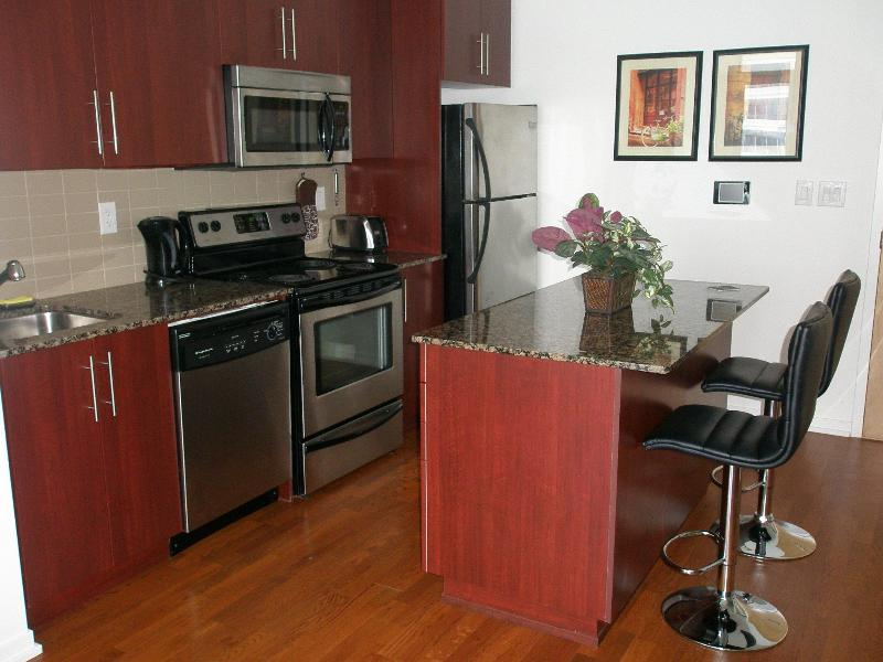 Stainless Steel Kitchen Appliances - Downtown Toronto Furnished Suite Better Than Hotel - Toronto - rentals