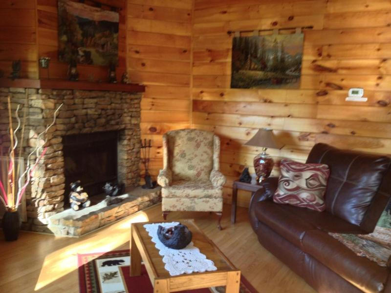 Private Cabin *Gatlinburg Location*Wi-Fi* Hot Tub - Image 1 - Gatlinburg - rentals