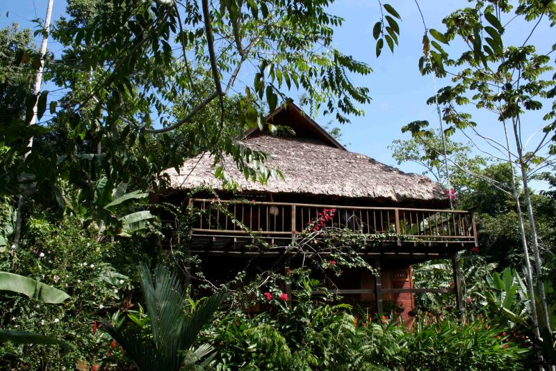 View of the House - La Ceiba - Jungle Ecohouse Of The Jaguar Rescue Center Foundation - Puerto Viejo de Talamanca - rentals