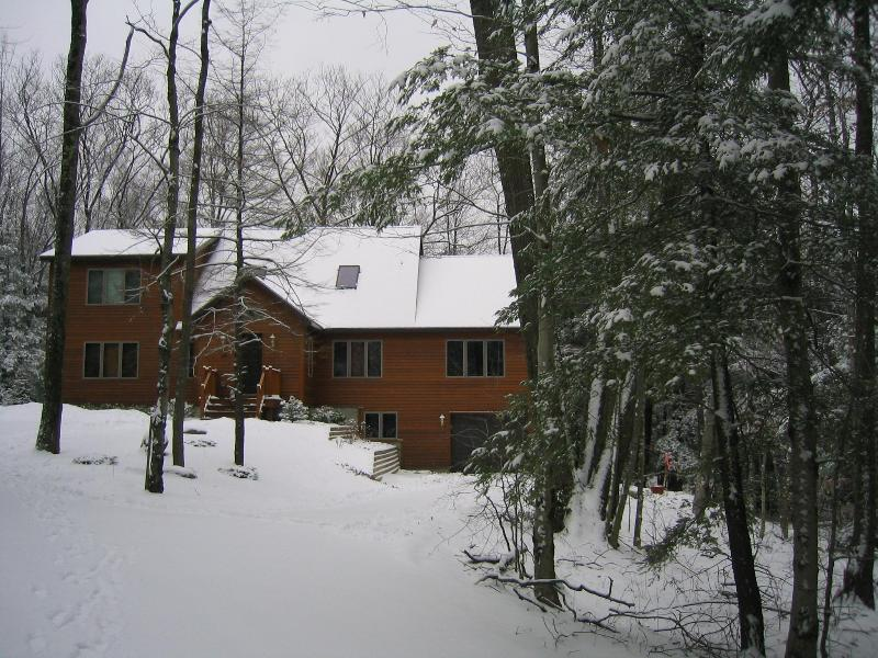 Beautiful Berkshire Winter - Deluxe New Home, 2 Master Suites, Tanglewood Area - Lee - rentals