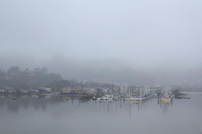 View on a rainy day - Edgewater - Waterfront Home In San Francisco Area - Mill Valley - rentals
