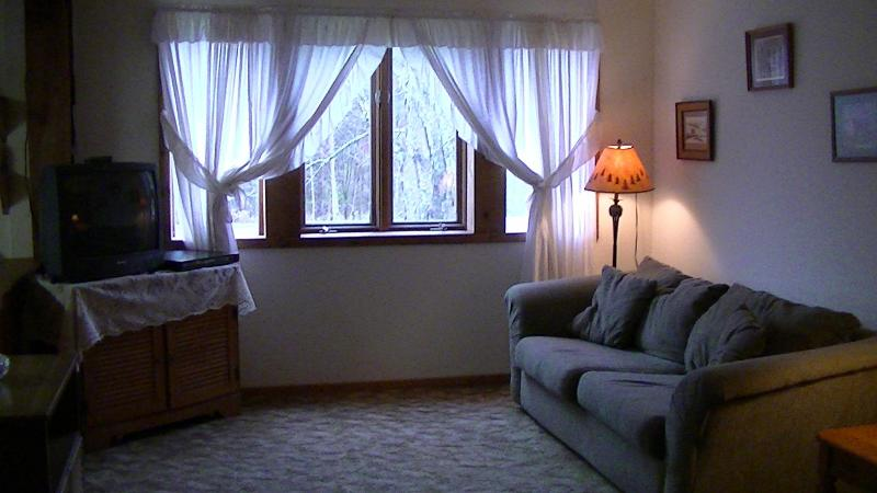 Open Living room & Kitchen - Catskill Mountain Stream Getaway - Roxbury - rentals