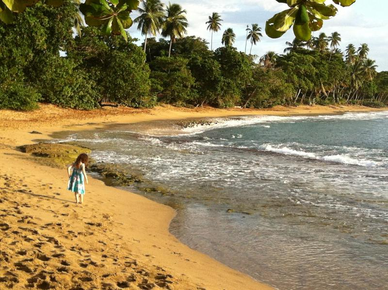 'Steps Beach, great for snorkeling, just a 6 minute drive' - Entire Home from $159/a Nite Renovated 4 Bds,2Bths - Rincon - rentals