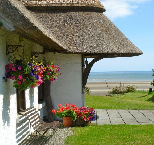 Thatcher's Rest Cottage - Image 1 - Bettystown - rentals