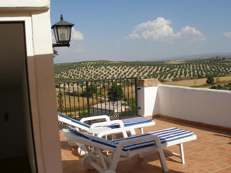Private rooftop terrace views of Sierra Nevada - Self-cater holiday house Bracana Illora Granada - Bracana - rentals