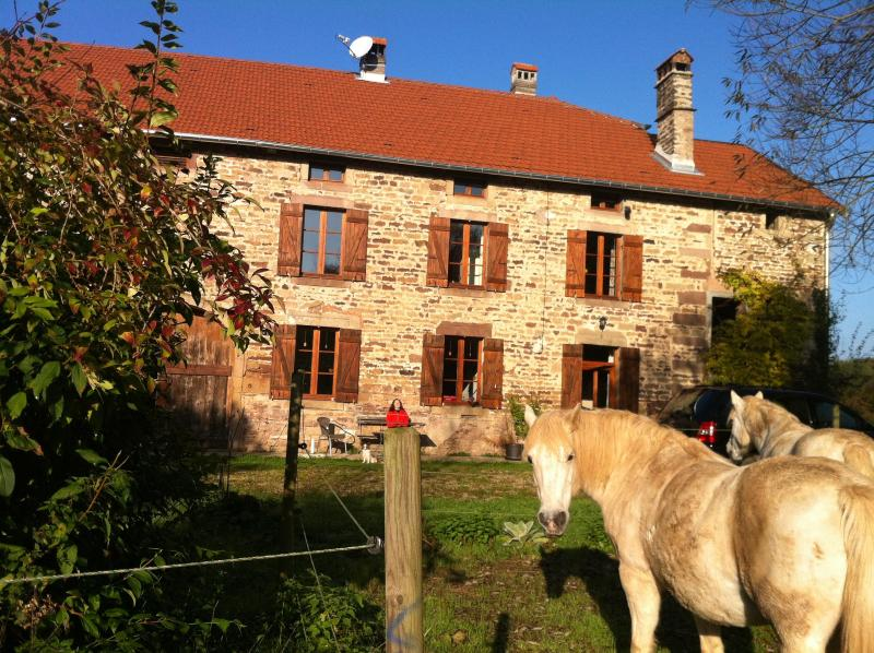 House - Farmhouse with private meadows, wood and lake - Belfort - rentals
