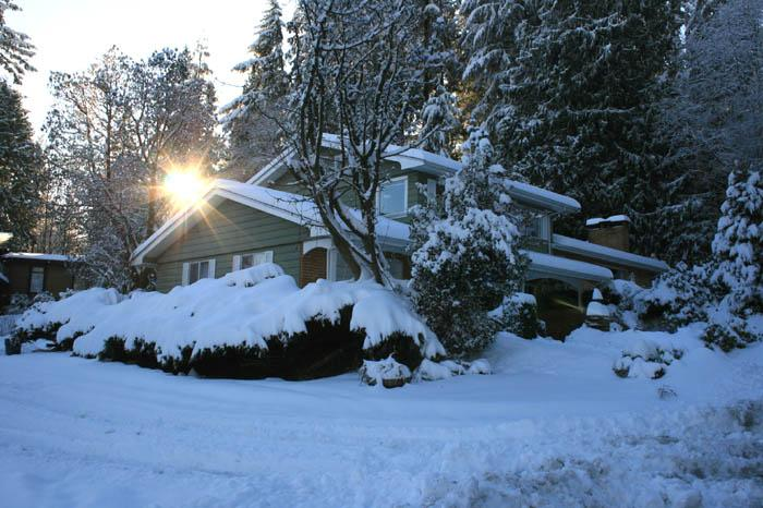 House from East in Winter - 4bedroom 2,5bath house in Port Moody  30 min to Vancouver - Port Moody - rentals