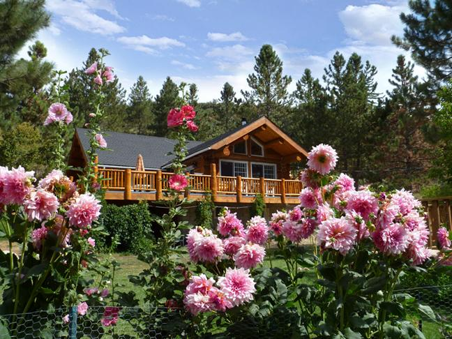 Unique Handcrafted Log Home on 5 acres - RIVER Amazing Log Home, Retreats & Family Reunions - Angelus Oaks - rentals