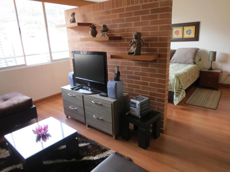 Media center - Spectacular loft like studio, Business District! - Colombia - rentals
