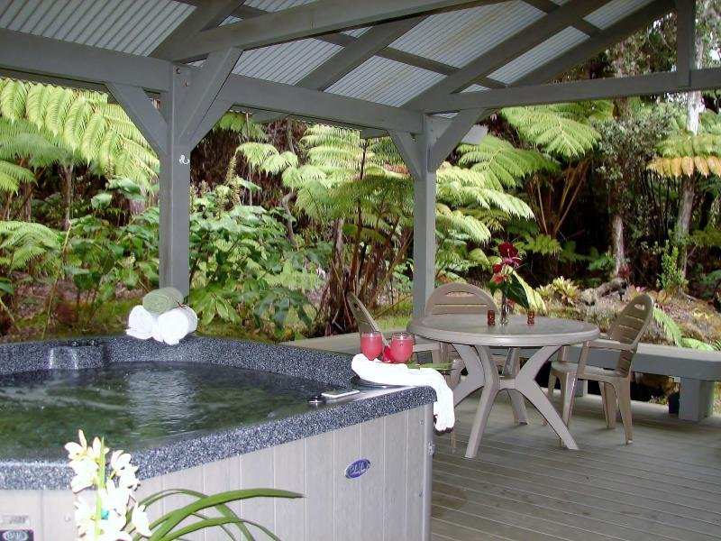 Privacy on your large lanai surrounded by the Rainforest - Hot Tub, Fireplace, Privacy and No Cleaning Fees! - Volcano - rentals