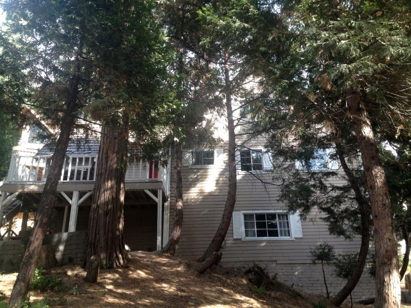 Home Away From Home! - Image 1 - Lake Arrowhead - rentals
