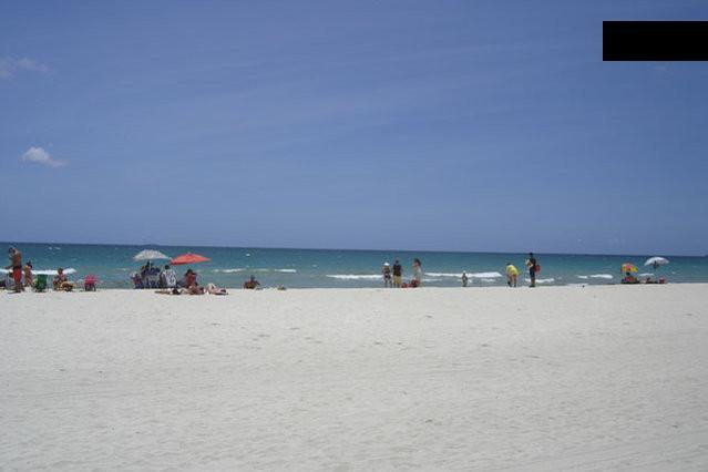 MIAMI BEACHFRONT CONDO+POOL+PARKING+WIFI! 517 - Image 1 - Miami Beach - rentals