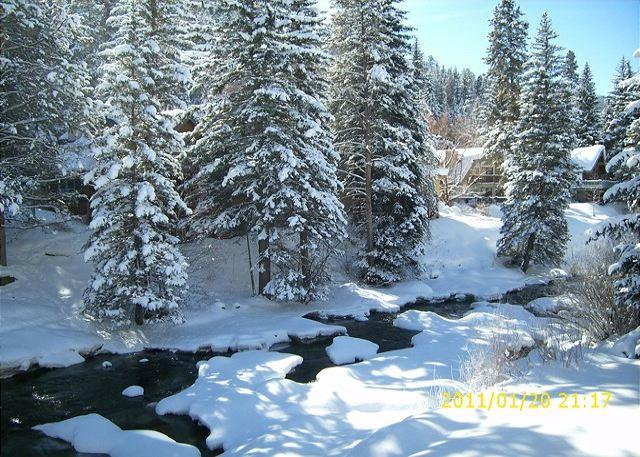 Cabin in a condo, wonderful one bedroom right on the Gore Creek. - Image 1 - Vail - rentals
