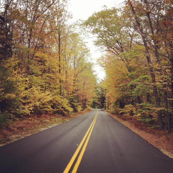 Fall on the way to the cottage - Little Sebago Lake Cottage - Gray - rentals