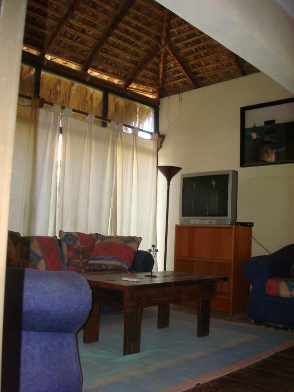 Living room (palm leaf roof) - III Good Location And Price, Nice, Clean And Comfortable. - La Paz - rentals