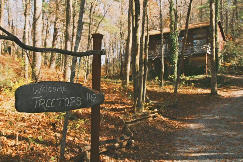 Welcome to your vacation - 'Treetops' in the North Ga Mountains.  With WIFI! - Rabun Gap - rentals