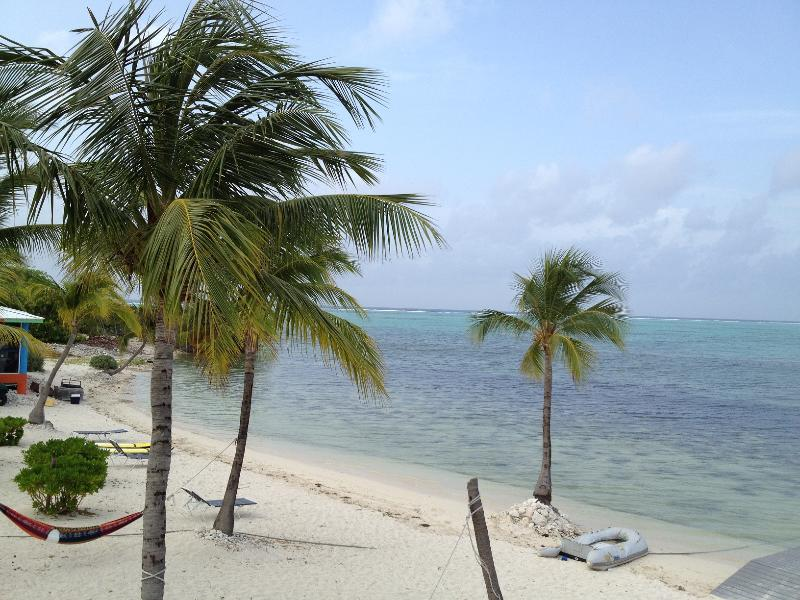 Beautiful white sand beach, hammocks for relaxing at Sunset Cove - Oceanfront kitchenette on a white sandy beach - Little Cayman - rentals
