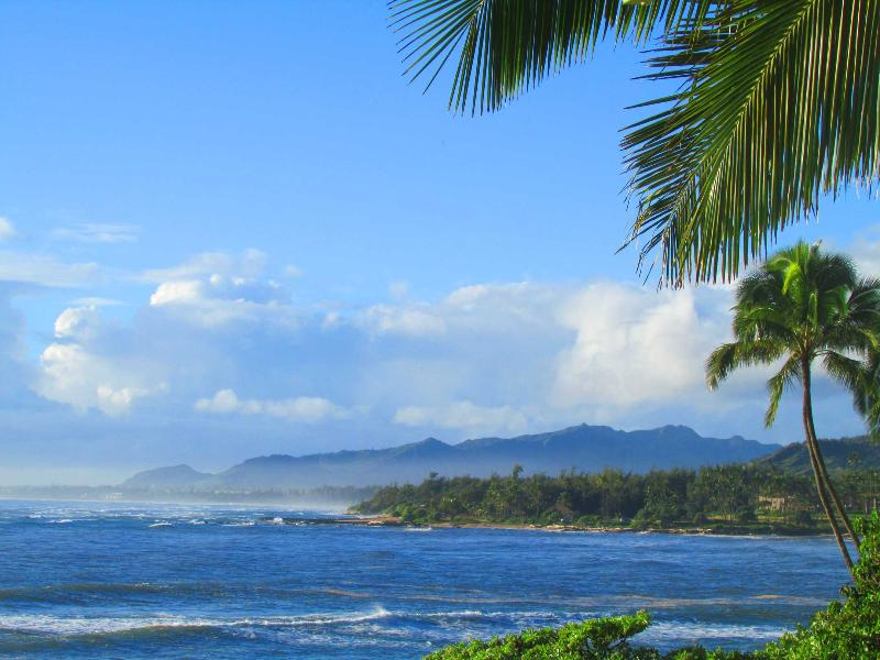 Beautiful Coastal Views! - Direct Oceanfront Paradise that is Magical - Kapaa - rentals