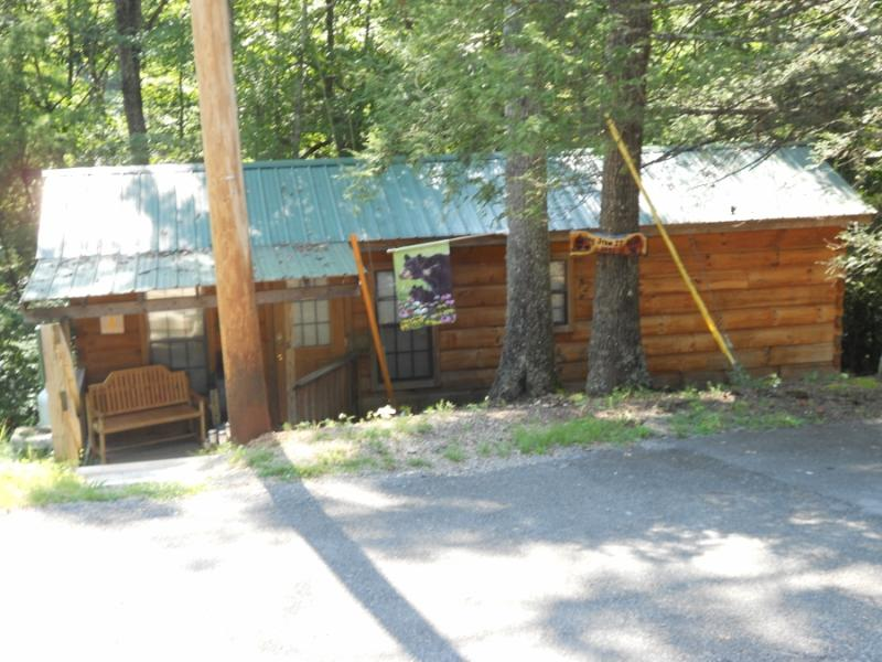 Come Get 'Away from it All' and See the Smoky's - Image 1 - Sevierville - rentals