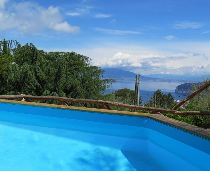 swimming pool - Villa panoramica Sorrento with swimming pool - Sorrento - rentals