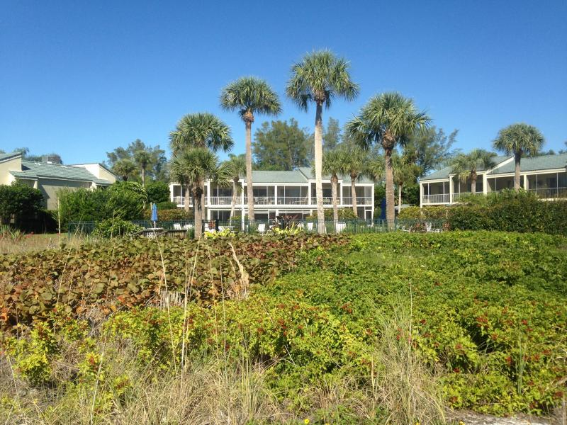 Extraordinary beauty in a quiet setting. - Image 1 - Longboat Key - rentals