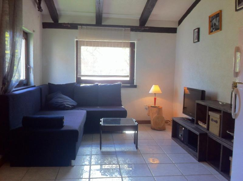 living room - Nice apartment in Vodice, Dalmatia! - Vodice - rentals