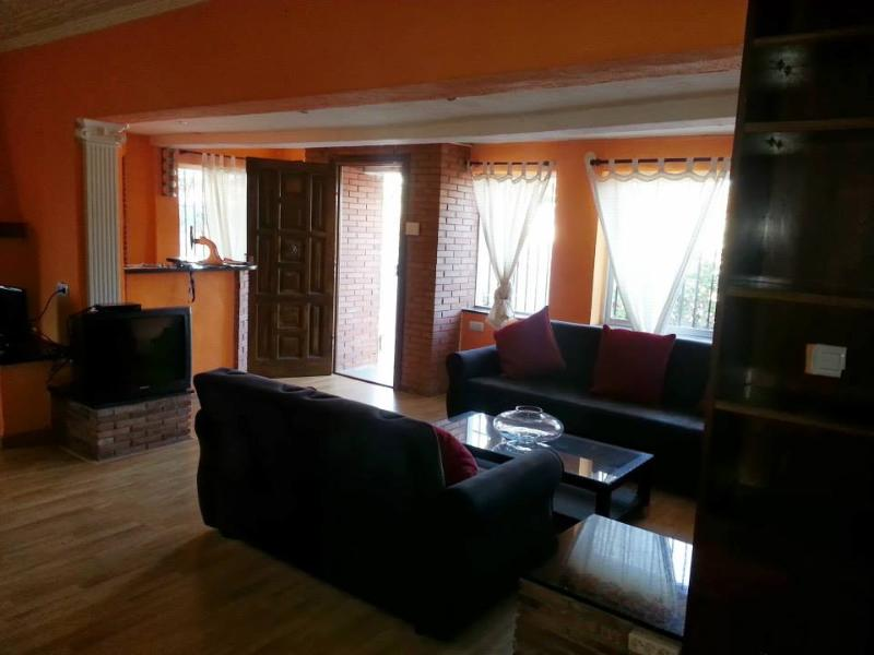 salon - Mediterranean Villa for rent - Malaga - rentals