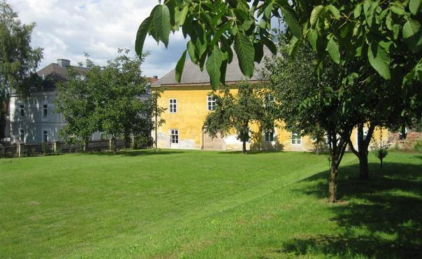 Comfortable and authentic apartment  in historical building - AT-449787-Loosdorf - Image 1 - Loosdorf - rentals