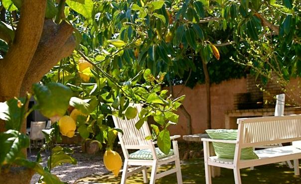 Holiday home in calm situation, Mallorca  only 50m from the beach - ES-50467-Cala Ratjada - Image 1 - Cala Ratjada - rentals