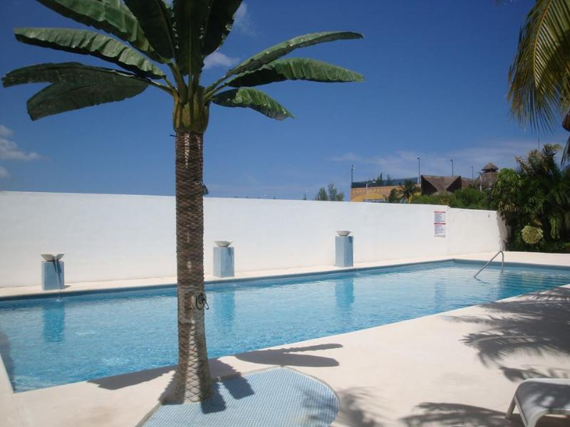 Stunning pool - Low price! Charming 2 bed ph only steps to beach! - Playa del Carmen - rentals