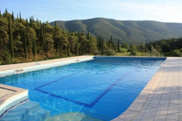 House Petra with swimming pool - Image 1 - Gruda - rentals