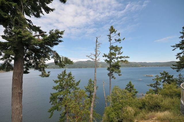 Incredible Ocean Views! - The Eagle's Nest Oceanfront Loft on 7 Acre Estate - Sooke - rentals