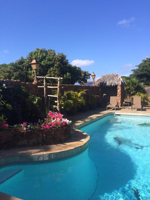 pool and fountain - Serene and Spacious Six Bedroom Island Retreat - Lahaina - rentals