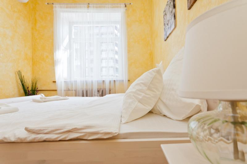 ТE.Central Area.Comfortable.Taganka - Image 1 - Moscow - rentals