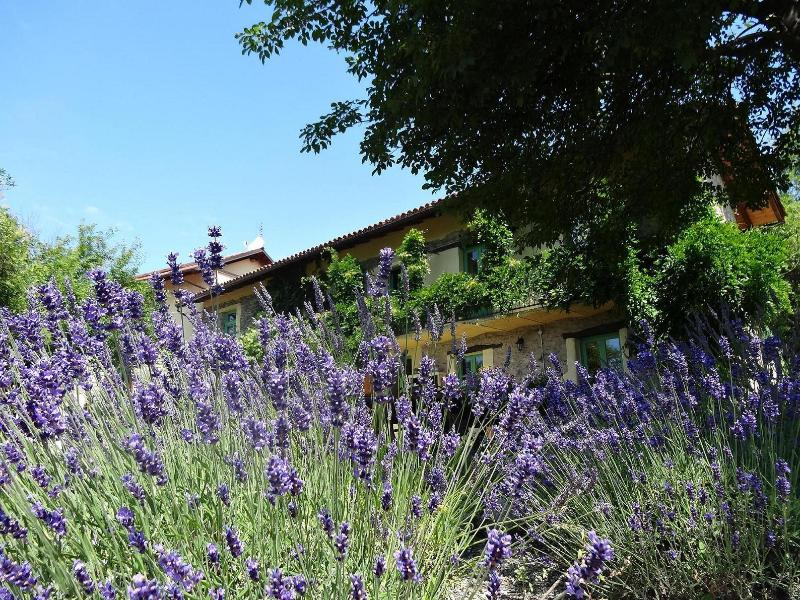 The holiday farm  - Gorgeous apartment in an Italian holiday farm - Spigno Monferrato - rentals