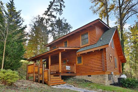 Cabin - Dog Days a two bedroom Cabin - Sevierville - rentals