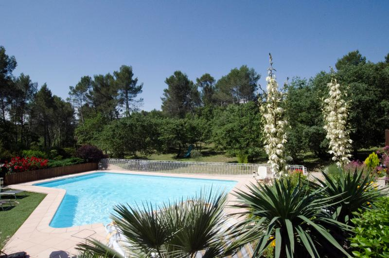 Large and heated swimming pool - Aix-en-Provence, Luxury property heated pool jacuzzi - Greasque - rentals