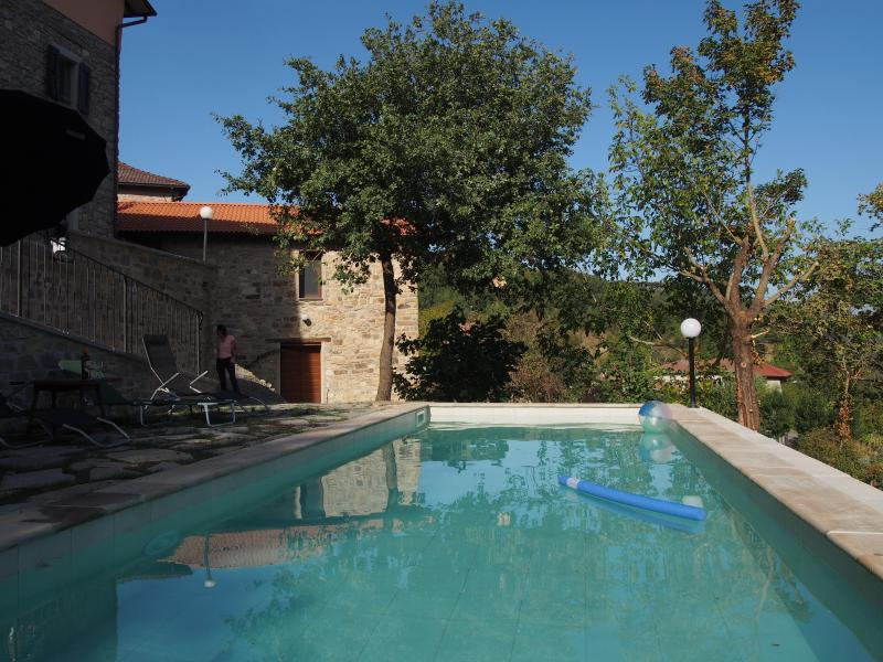 The shared swimming pool is a few steps from La Stalla (seen here in the background) - Lovely 1-bed barn conversion in mountains (2-3ppl) - Toano - rentals