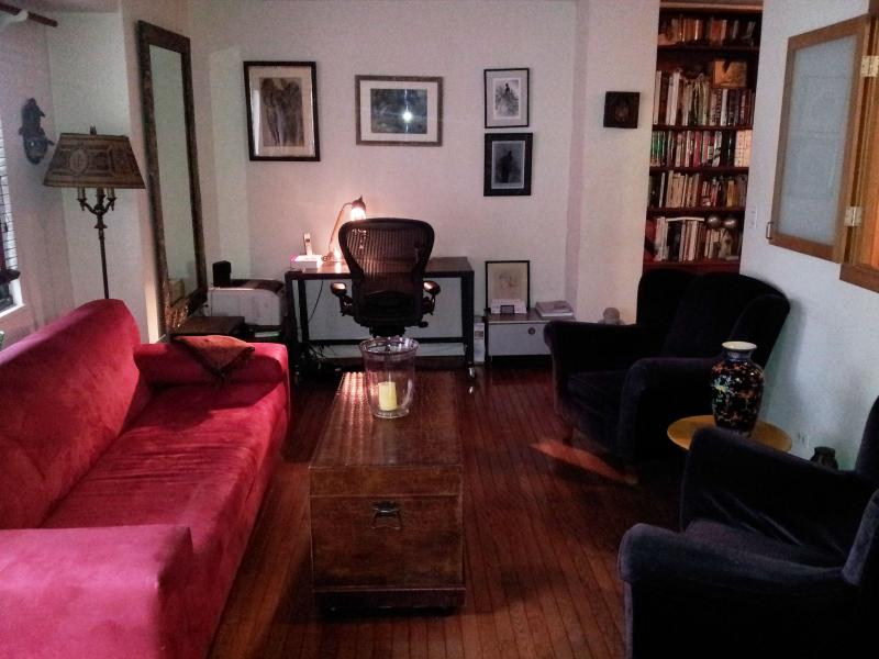 Living room - Large One Bedroom in the heart of midtown - Weehawken - rentals