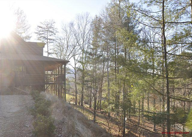 Dancing Stars Hideaway - Imagine you can play with the silver and golden stars in the clear mtn skies - Blairsville - rentals