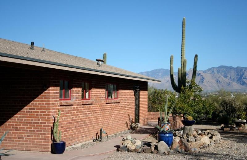 View of front of the house - So Close, Yet So Far Away! - Tucson - rentals