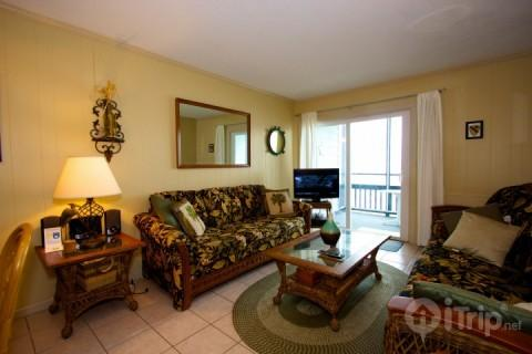 Sea Oaks 206 - Image 1 - Surfside Beach - rentals