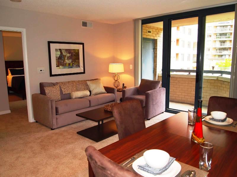 Living Room - Washington DC Area 2 Bedroom / 2 Bath Apartment - Arlington - rentals