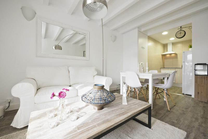 The White Flats: Flat B51 - Image 1 - Barcelona - rentals