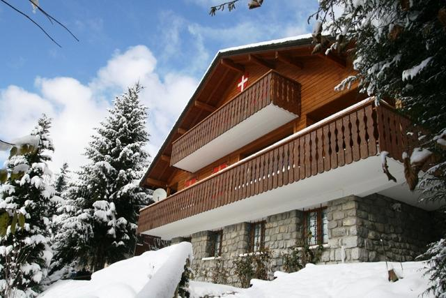 luxury chalet for 16 people located in Chatel - Image 1 - Chatel - rentals